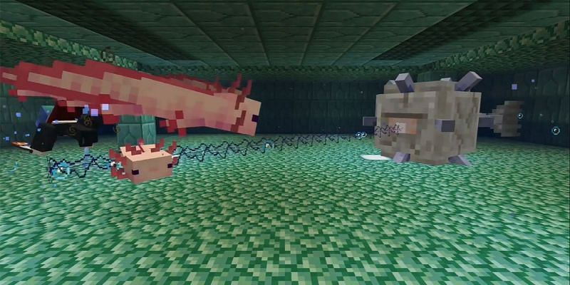 Axolotls attempting to battle an Elder Guardian (Image via Minecraft)
