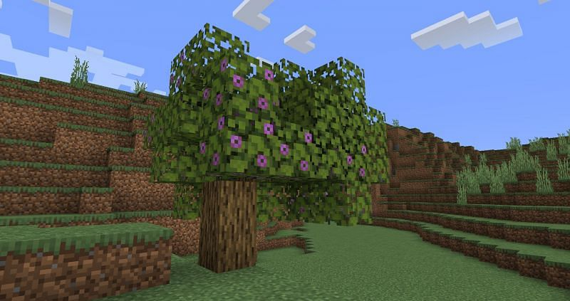 What is rooted dirt in Minecraft?
