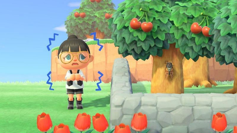Villagers missing in Animal Crossing (Image via Animal Crossing world)