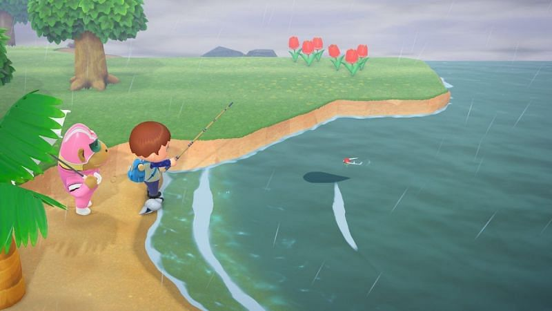 Player trying to catch Coelacanth in Animal Crossing: New Horizons (Image via Hey Poor Player)