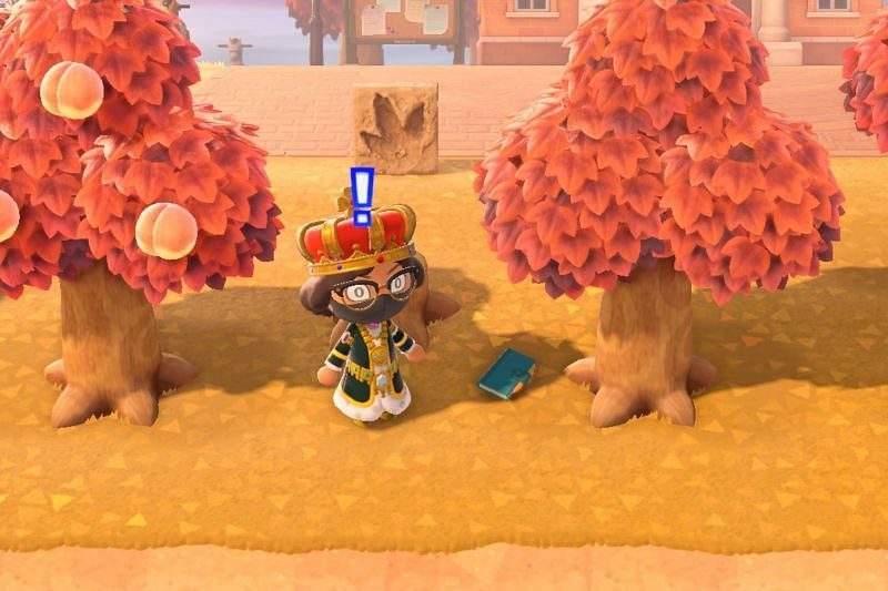 Player finding a Lost Item in Animal Crossing (Image via Digital Trends)