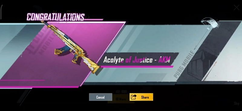 The Acolyte of Justice skin