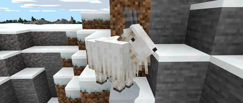 A Goat searching for its next victim (Image via Mojang)