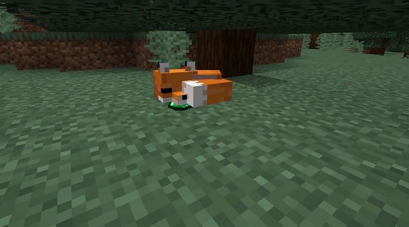 A fox with an emerald in its mouth (Image via ExplodingTNT)