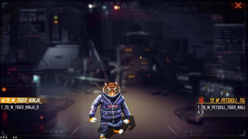 The new pet is called Tiger Ninja (Image via Moniez Gaming)