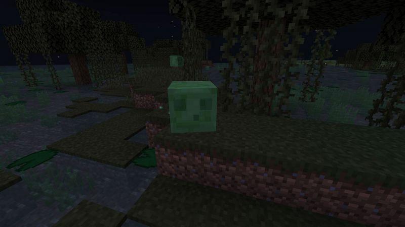 Un poco de barro en el bioma del pantano (en la foto a través de Minecraft)