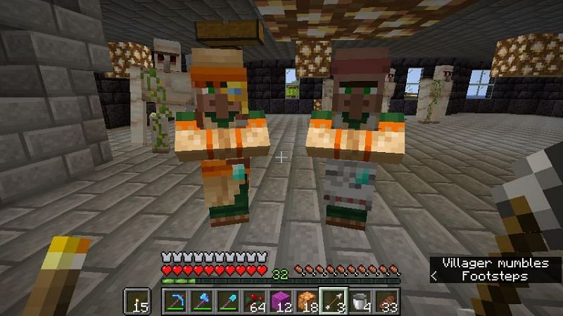 Two Master Villagers (Image via Reddit)