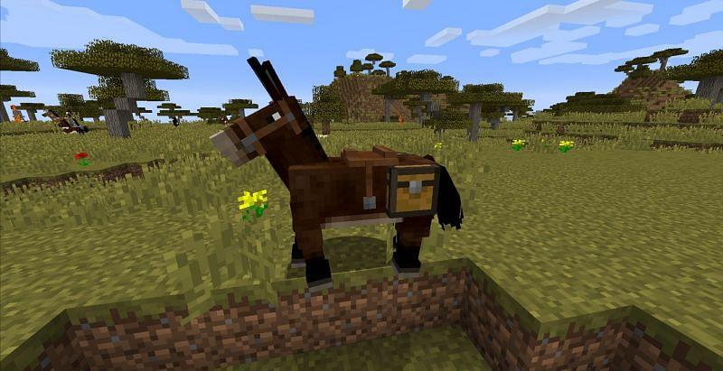 Une mule dans Minecraft (Image via Gamers Decide)
