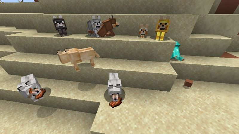 how to get more animals on minecraft | WTBBLUE