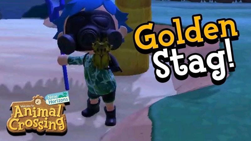 Catching a Golden Stag in Animal Crossing: New Horizons (Image via ImaginatorPage)