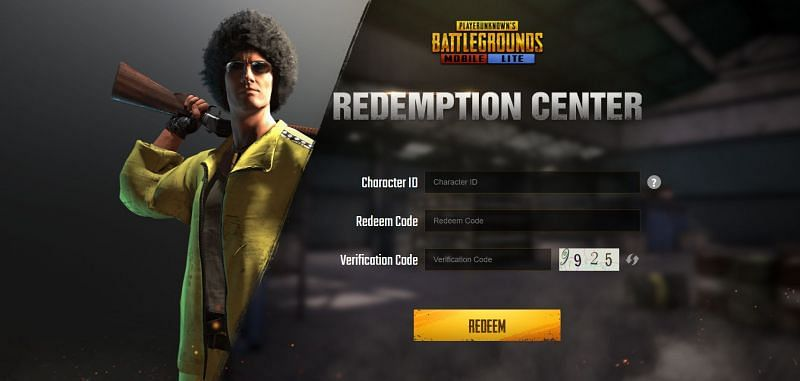 You are required to type in all the required details in the text field (Image via PUBG Mobile Lite)