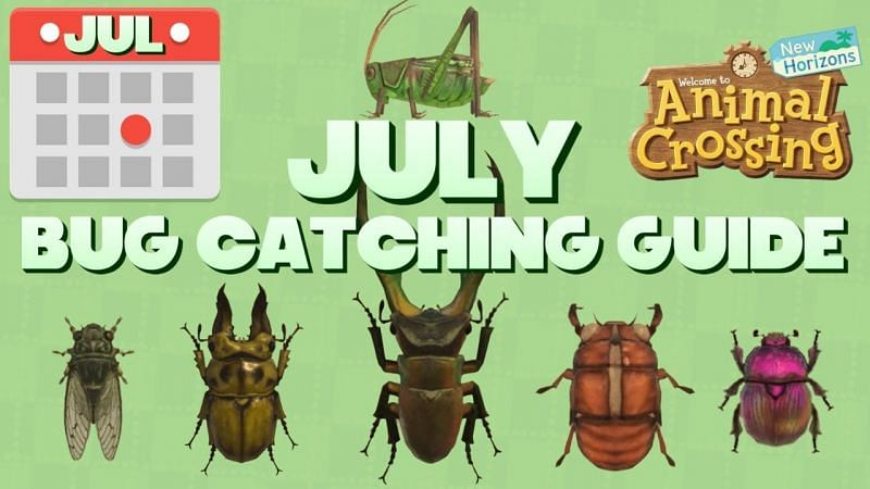 Animal Crossing: New Horizons July bug-catching guide (Image via Super Milltendo)