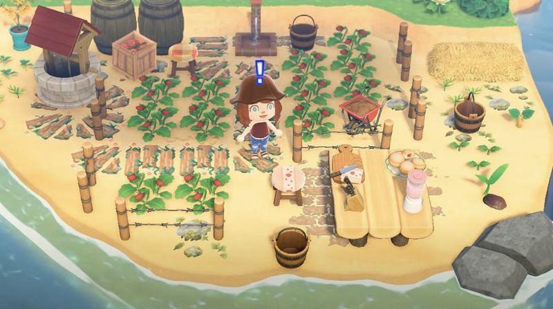 Strawberry vineyard on an Animal Crossing: New Horizons beach (Image via Lex Play)