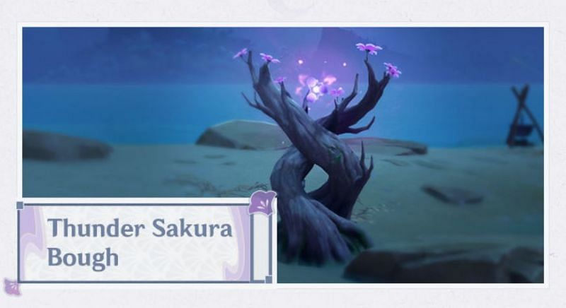Thunder Sakura Bough in Genshin Impact version 2.0 (Image via Mihoyo)