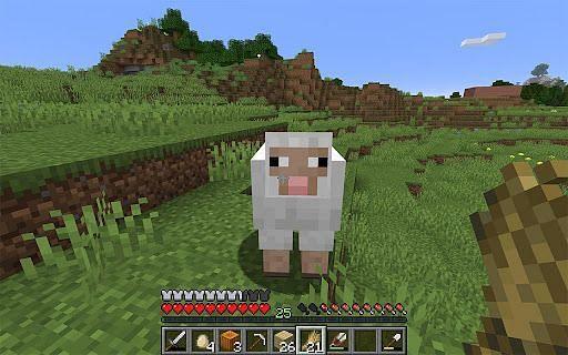Fluffy sheep (Image via Minecraft)