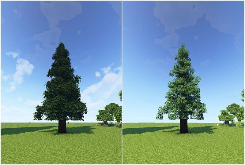 When combined with shaders, leaves look absolutely stunning (Image via u/Trrig on Reddit)