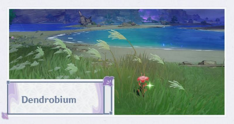 Dendrobium in Genshin Impact 2.0 (Image via Mihoyo)