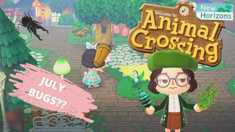 Animal Crossing New Horizons bugs arriving in July (Image via froggycrossing)
