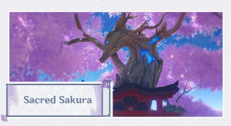Sacred Sakura in Genshin Impact 2.0 (Image via Mihoyo)