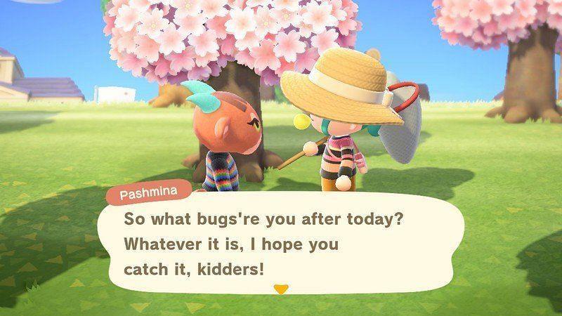 Pashmina berinteraksi dengan penduduk desa di Animal Crossing: New Horizons (Gambar via iMore)