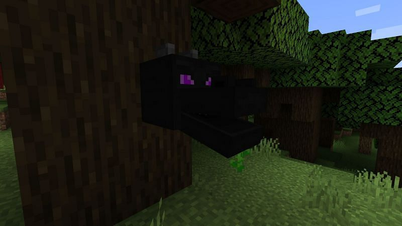 The dragon head in Minecraft (Image via Minecraft)