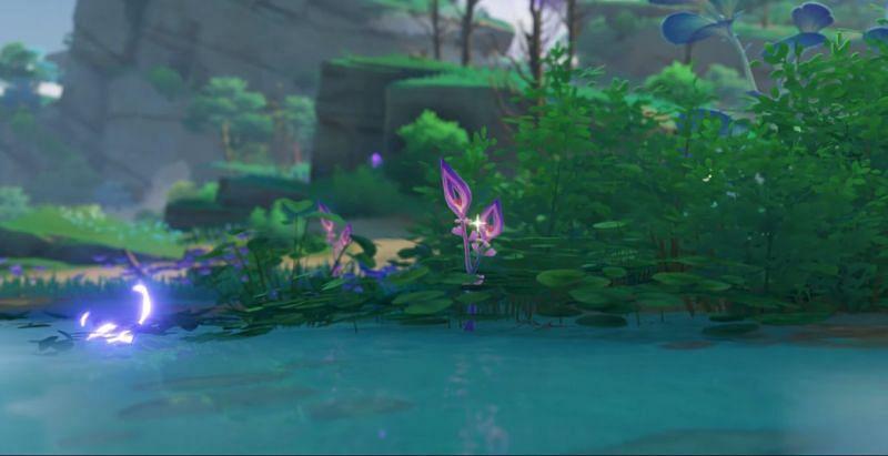 New Plants in Genshin Impact 2.0 (Image via Mihoyo)