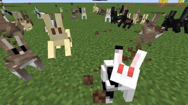 Rabbits in Minecraft. Image via Minecraft Forum