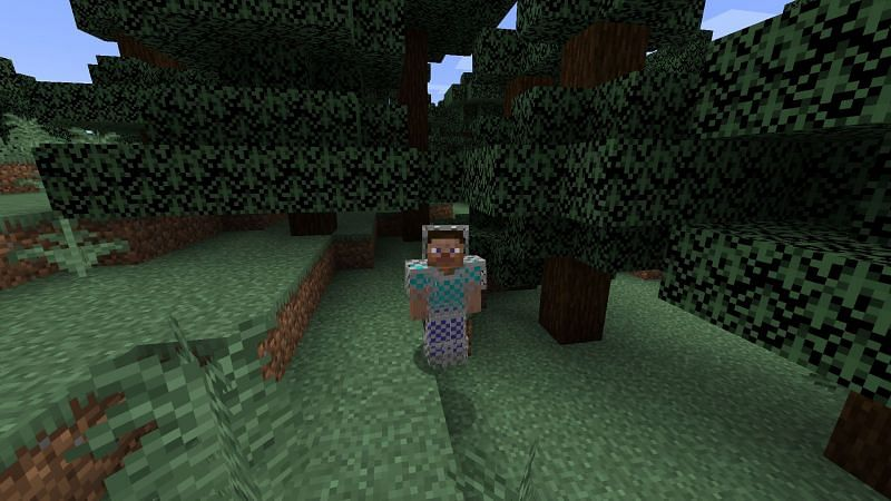 Steve wearing chainmail armor (Image via Minecraft)
