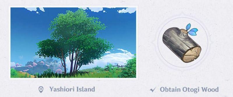Otogi Wood in Genshin Impact 2.0 (Image via Mihoyo)