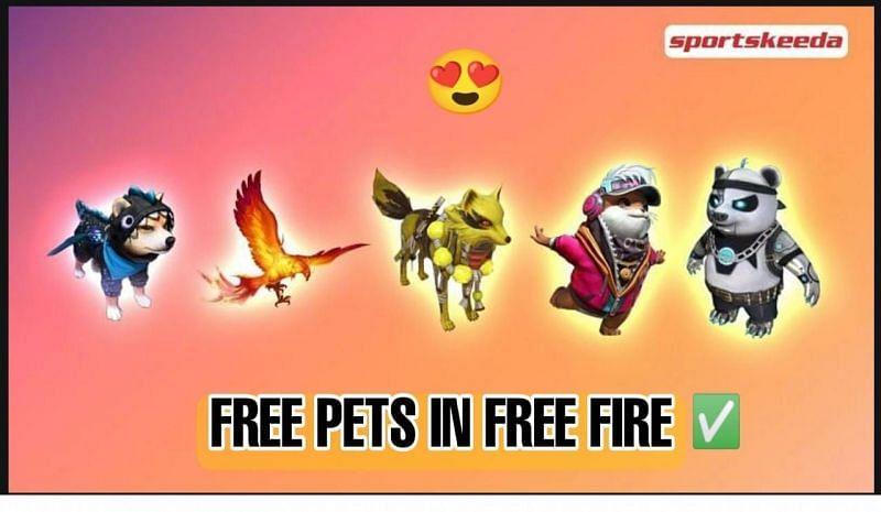 Free Fire में मुफ्त पेट्स(Image Credi: sportskeeda)