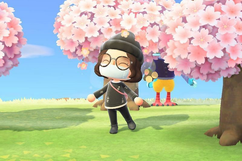Cherry blossom trees are only around for a short period of time every year. (Image via Nintendo)
