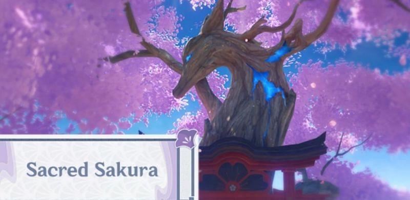 The Sacred Sakura tree (Image via miHoYo)