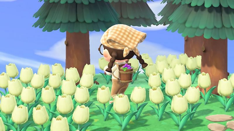 The grape harvest basket will be available throughout September (Image via Nintendo)