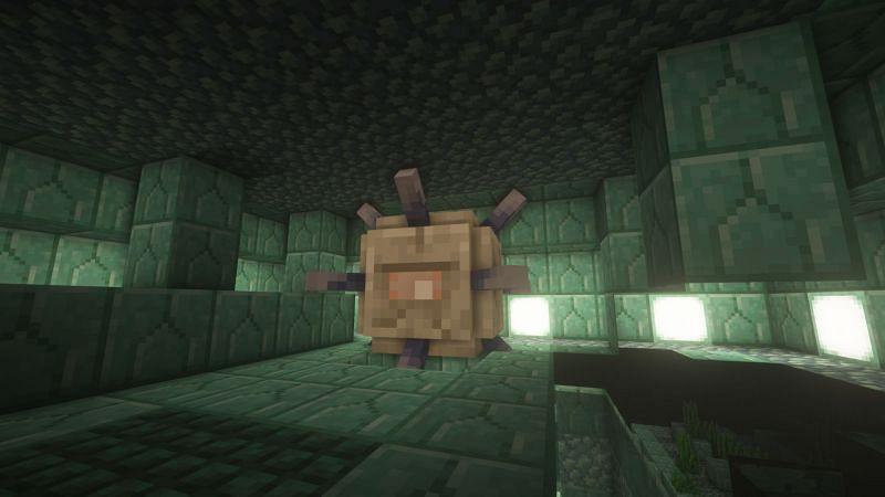 Elder Guardian (Gambar melalui Minecraft)