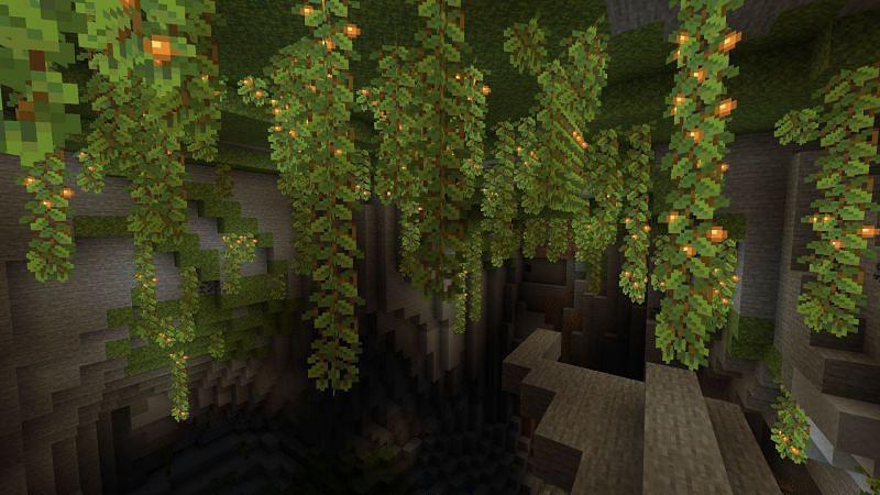 New biomes (Image via Minecraft)
