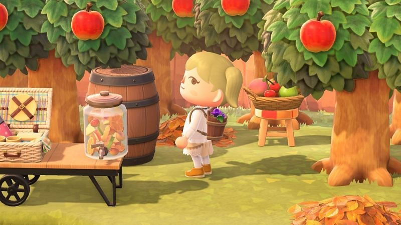 Grape Harvest Festival (Image via Nintendo)