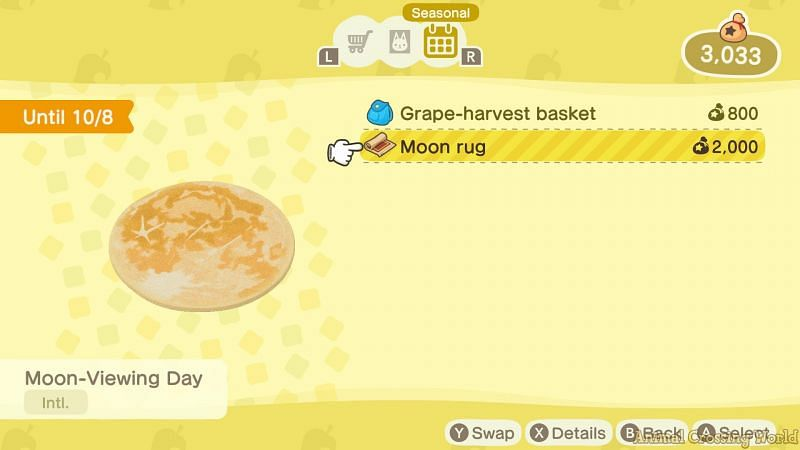 Moon rugs can't be placed outdoors (Image via Nintendo)