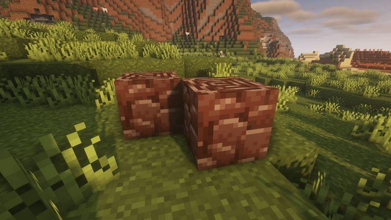 Ancient debris (Image via Minecraft)