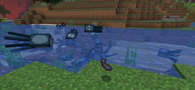 Ink sacs in Minecraft are dropped when a squid dies (Image via Minecraft)