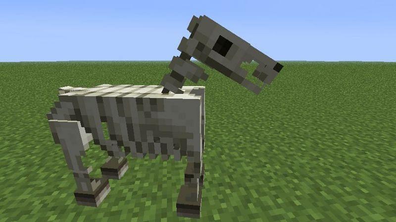 Rare skeleton horse (Image via Minecraft)
