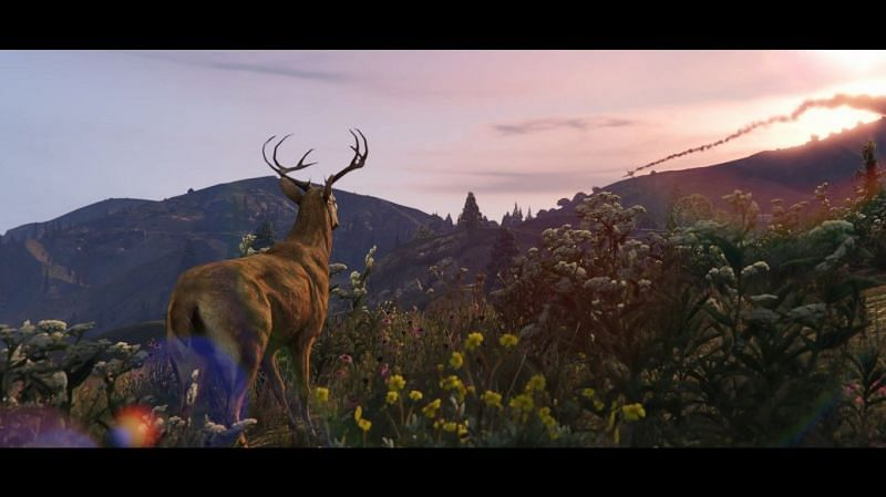 A recent trailer just dropped for the next-gen release of GTA 5 (Image via Rockstar Games)