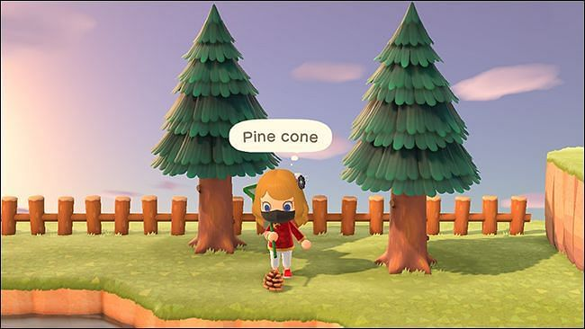 Players can get pine cones and acorns by shaking trees (Image via Animal Crossing world)