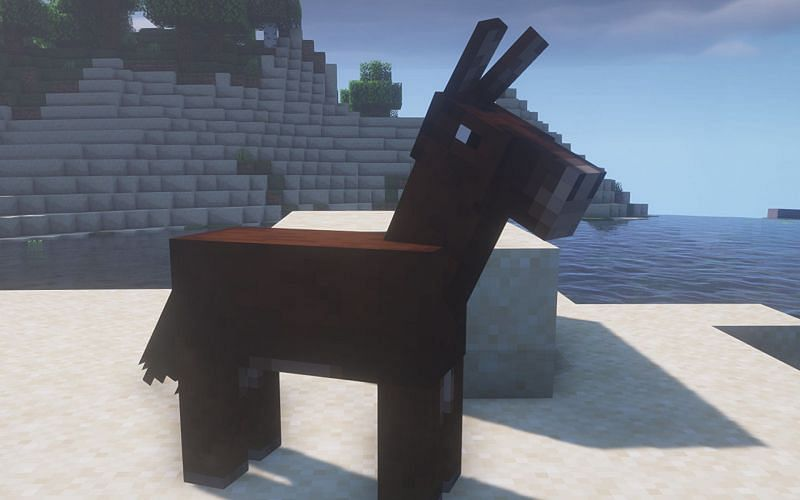 An image of a Minecraft mule standing on a beach in-game (Image via Minecraft)