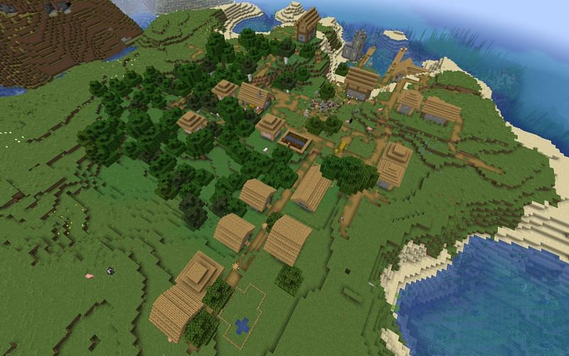The plains village (Image via Minecraft)