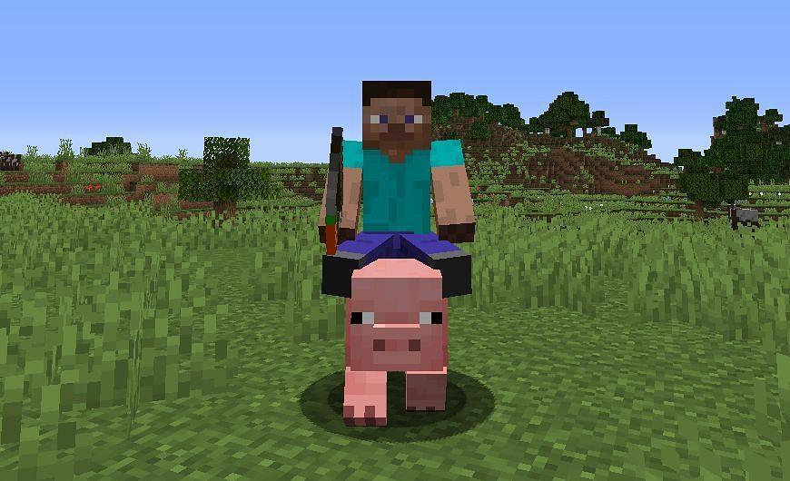 Riding a pig (Image via Minecraft Fandom)