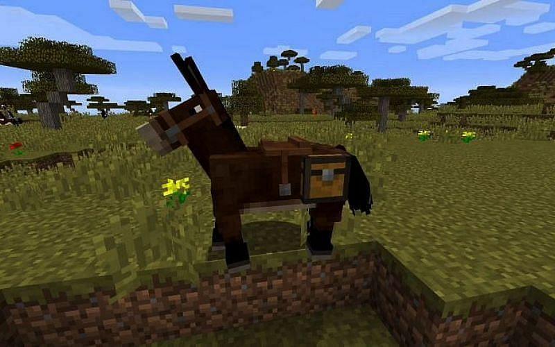 A Minecraft mule (Image via Minecraft)