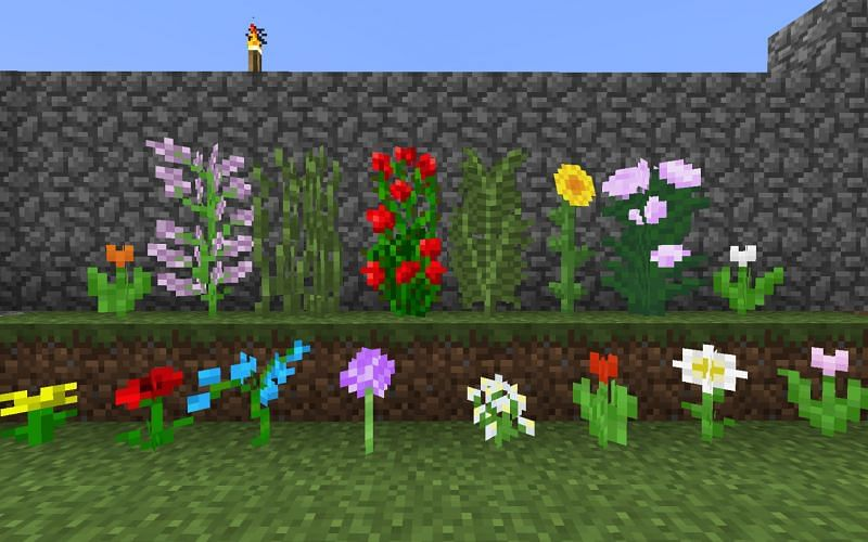 An image of every flower in-game (Image via Minecraft)
