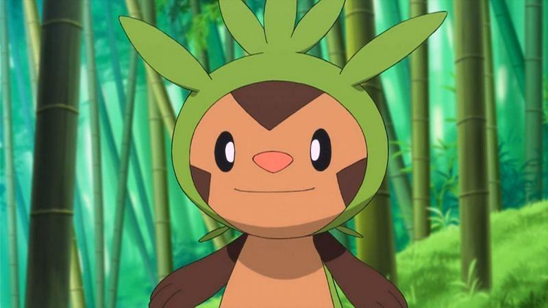 Chespin è uno dei pochi Pokemon principianti che non ha ancora avuto una giornata comunitaria (Immagine tramite The Pokemon Company)