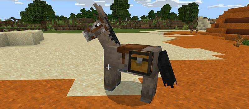 A Minecraft donkey (Image via Minecraft)