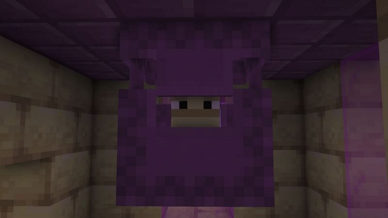 A shulker in an end city (Image via Minecraft)